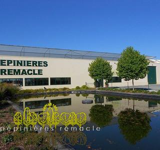 Pépinières Remacle S.R.L - Galerie photos